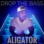 دانلود اهنگ جدید Dj Aligator به نام Put Your Hands In The Air