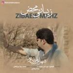 دانلود آهنگ جدید شهرام بهزادپور به نام زیبایی محض