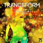 دانلود ریمیکس جدید ریلجی به نام ترنسفورم ۷۵