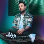 دانلود آهنگ جدید و شاد صالح صالحی به نام ببین هوارو