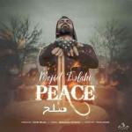 دانلود آهنگ مجید اصلاحی به نام صلح
